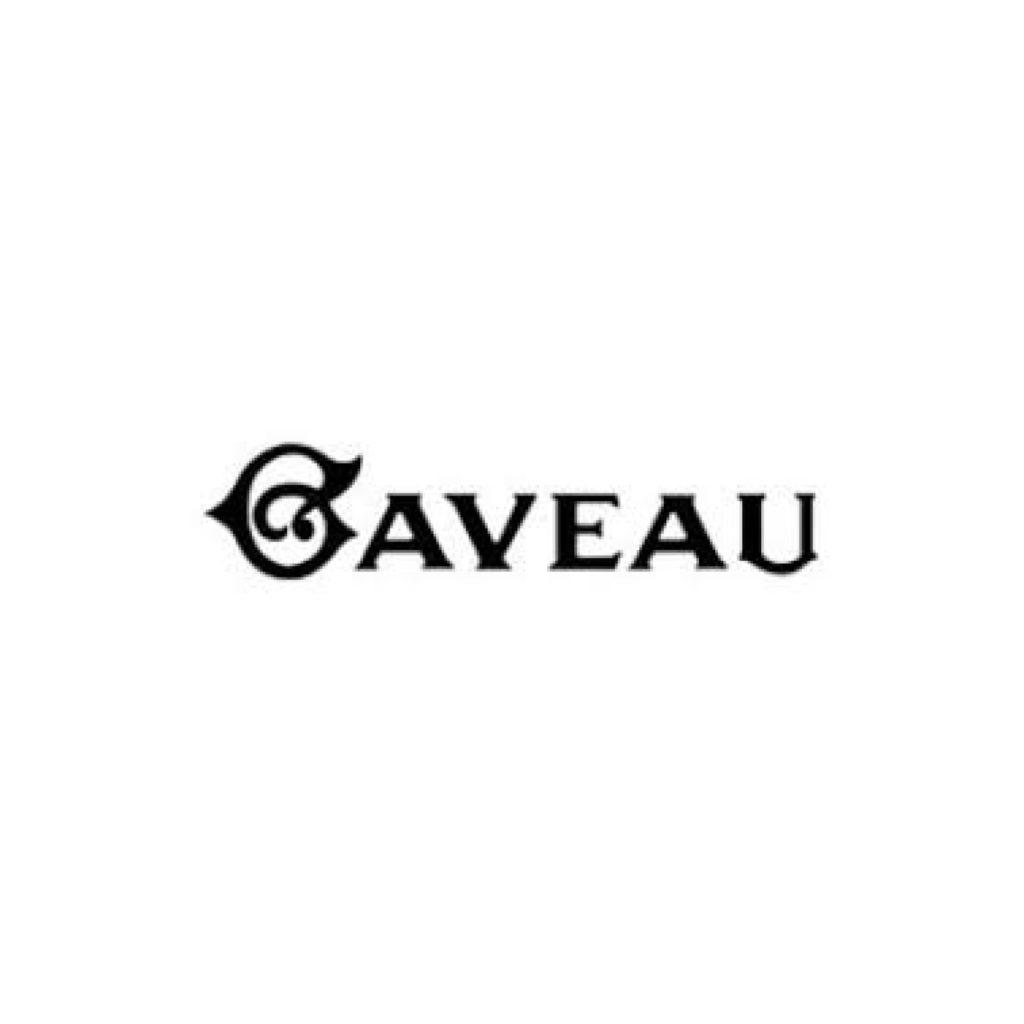 Logo Salle Gaveau